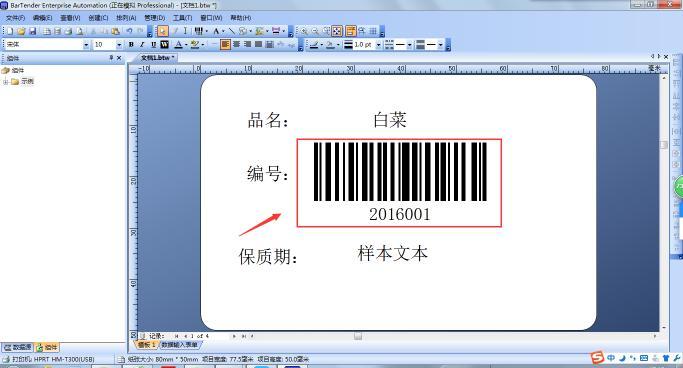 汉印Excel数据导入BarTender操作范例说明  第16张