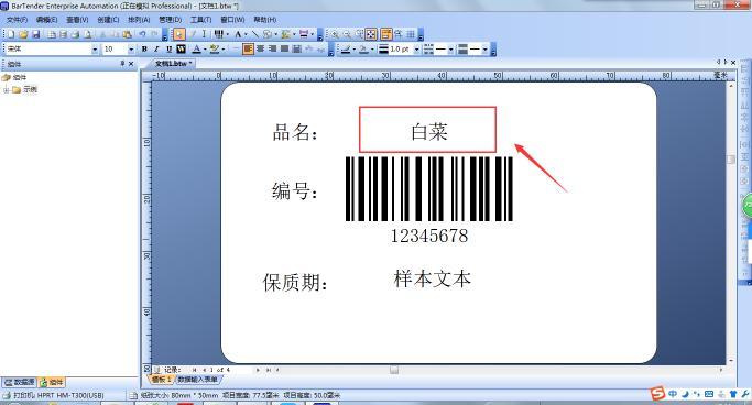汉印Excel数据导入BarTender操作范例说明  第14张